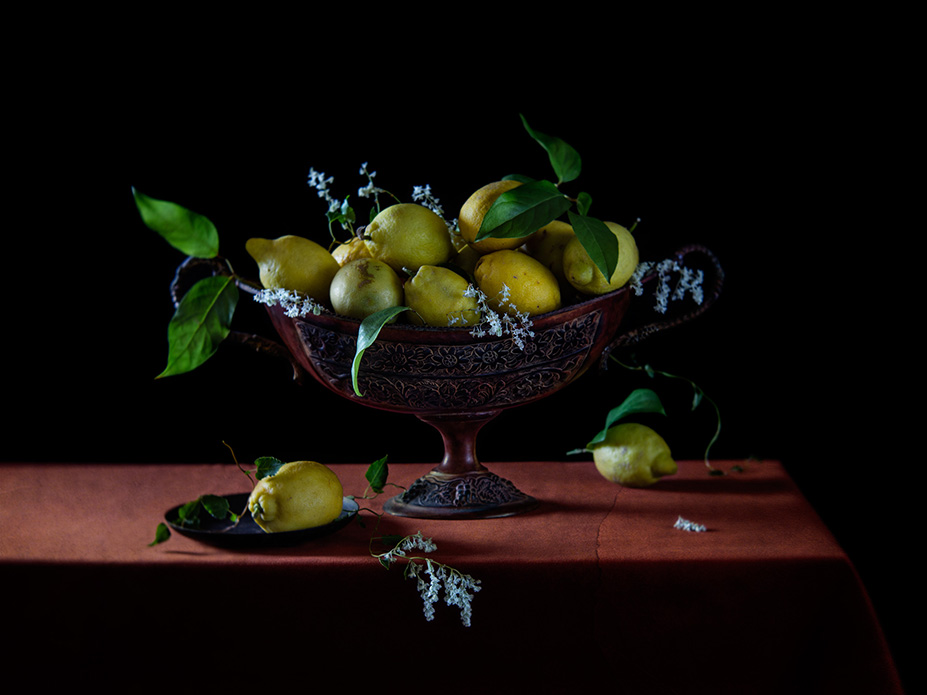 still life photography workshop in London