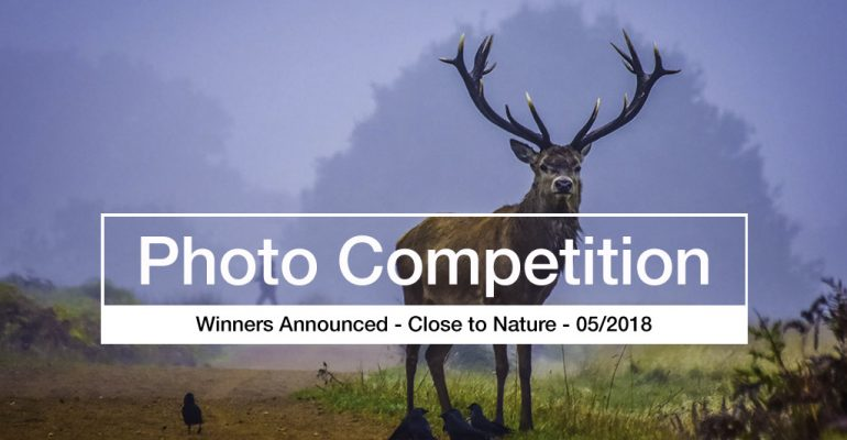 Close to Nature - photo competition winners