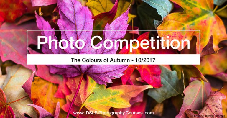 The Colours Of Autumn Photo Competition 2017 10 Blog