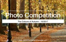 The Colours of Autumn - photography competition winners 2017