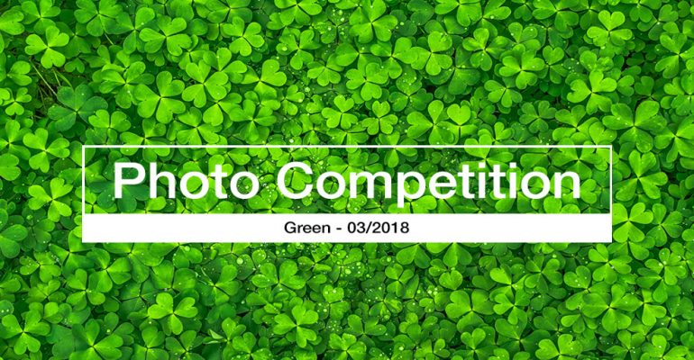 photography competition GREEN 2018 March