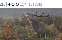 2013 National Geographic photography competition for professional photographers and amateur photo enthusiasts