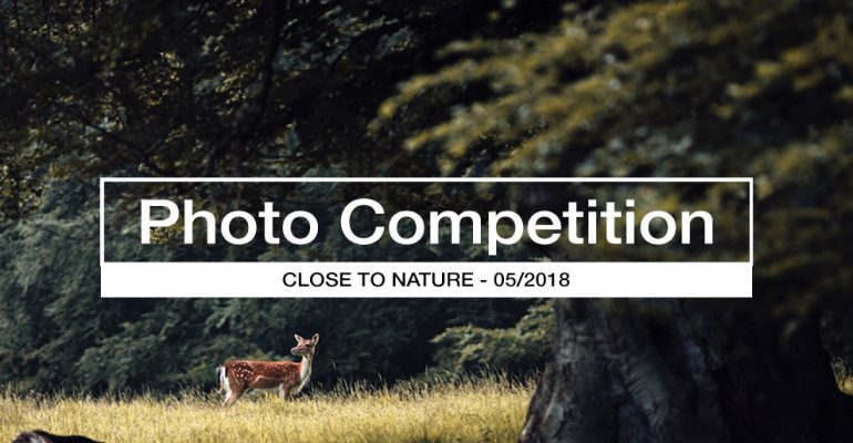 Close to Nature photo competition