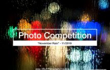 November rain photography competition 2019