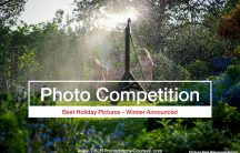 best holiday pics photography competition winner 2019-09