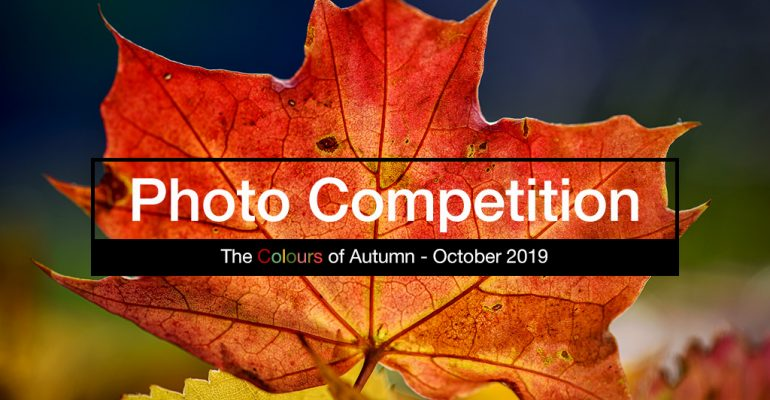 photography competition October 2019 - The Colours of Autumn