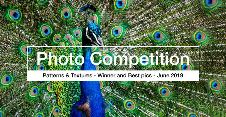 Simon Pampling - photography competition winner
