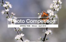 Christopher Mayhew - photography competition winner 2019 04