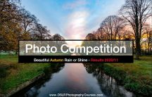 Autumn photography competition results banner