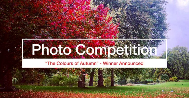 photography competition 2019 10 winner