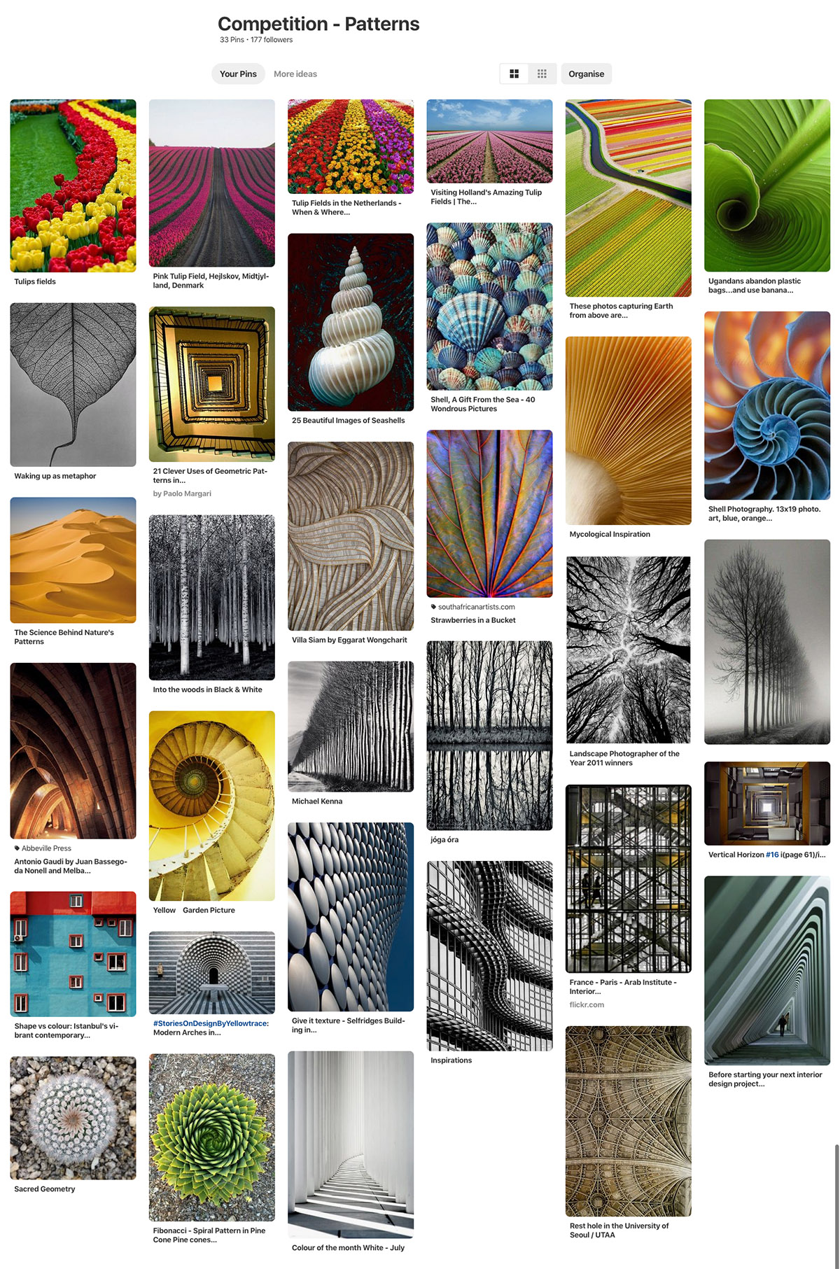 patterns and textures photography competition
