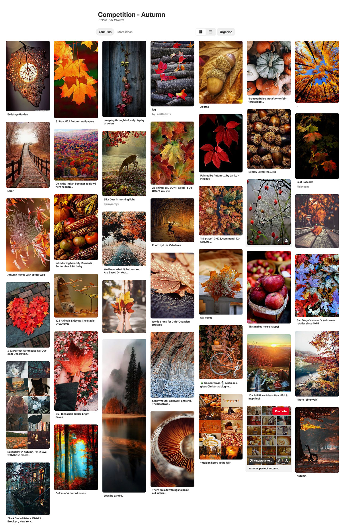 Autumn pictures inspire gallery on Pinterest