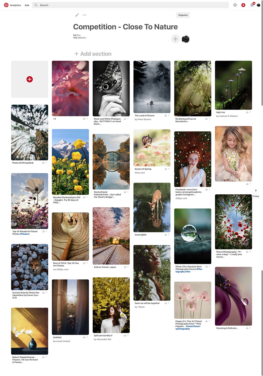 Pinterest - Close to Nature competition